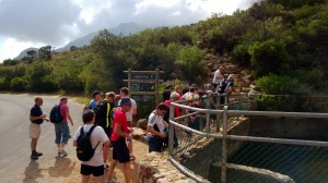 at the start of the Platteklip trek up Table Mountain