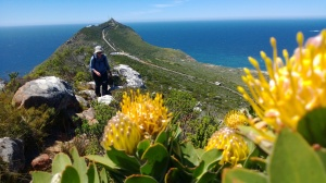 Hiking the Cape of Good Hopr Trail