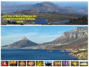 Table Mountain Brochure